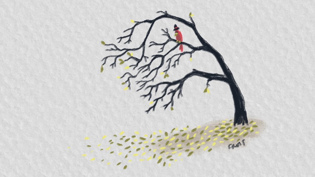 Cardinal_in_a_Tree